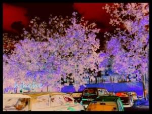 kesan editsemula gambar sekitar Hospital Selayang